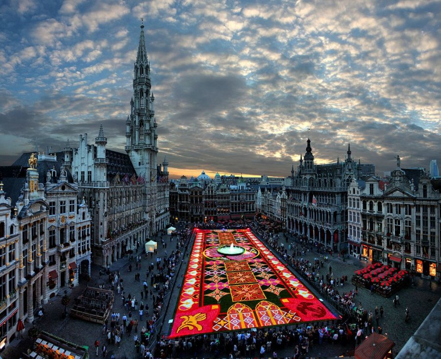 Biggest  Carpet of Flowers in the World, Brussels - Belgium