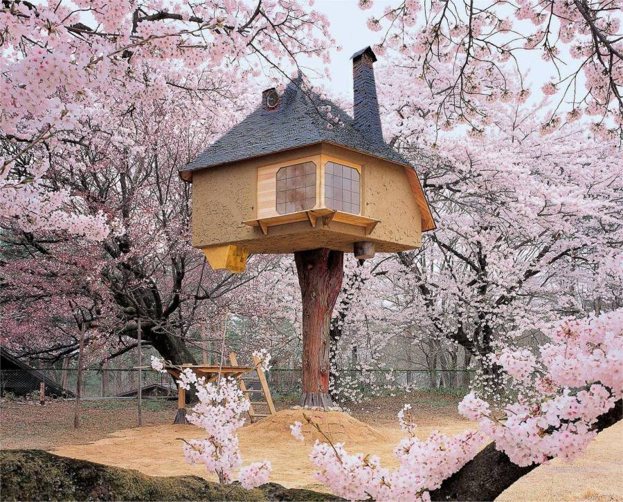 Tree house in Japan